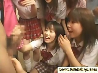 Japanese schoolgirls surround this hard cock and take turns blowing