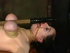Bondage sluts in bdsm action