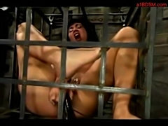 Bdsm caged  free