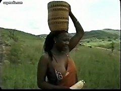 Afrikateil1  free