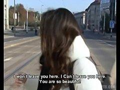 Czech streets - petra  free