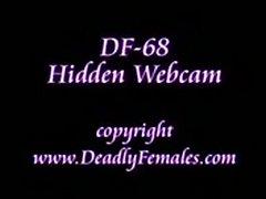 Df068-wm-cq  free